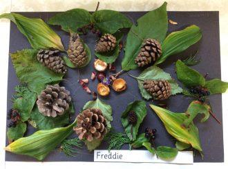 Freddie, Balnamore Primary School