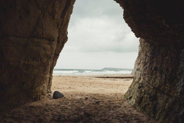 Tree & Tide Nature Walk