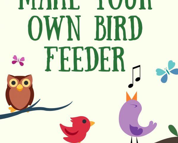 Day 7 - Make your own Bird Feeder